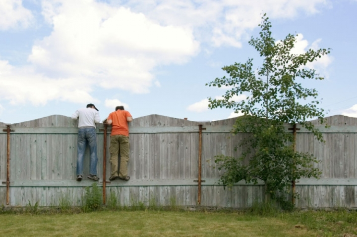 people-on-fence-looking-over-neighbour-web