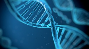 Mais sobre engenharia genética