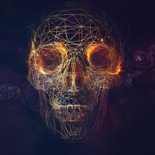 Digital-Skull-Artwork-ipad-air-wallpaper-ilikewallpaper_com
