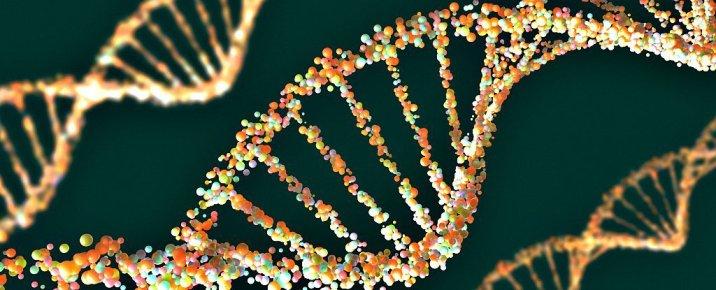 Geneticmeeting