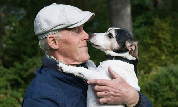 Os resultados revelaram variações dentro de duas regiões genômicas que parecem estar ligadas a um gene canino para o contato humano.