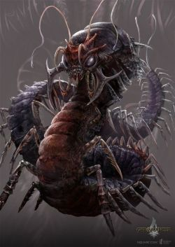 insectoid10